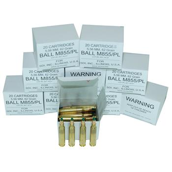 DS Arms 5.56X45 MM NATO Ammunition - 62 Gr. Steel Core - 200 Round Shooter Pack (10 Boxes)